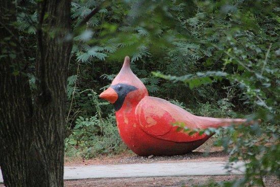 Durham, Karolina Północna: park