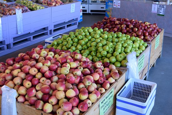 Cromwell, New Zealand: Apples for sale (winter)