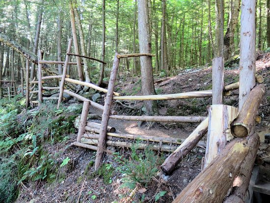 Pottersville, NY: One of the better trails