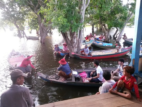 small boat for visite floating forest - Picture of Angkor