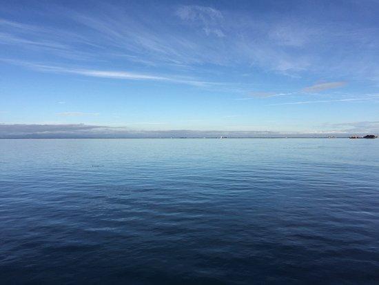 Port Angeles, واشنطن: Calm ocean surface