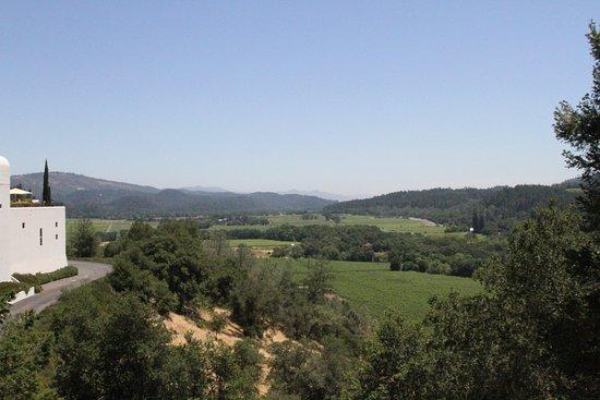 Калистога, Калифорния: View from gondola