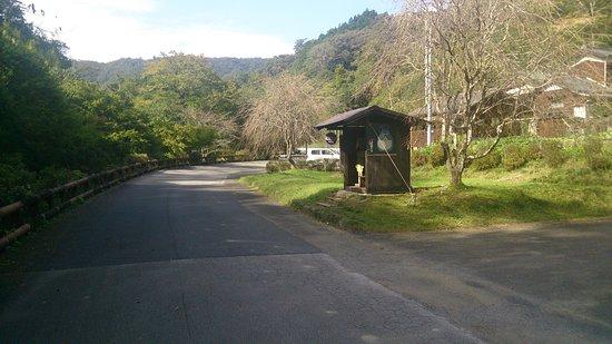 Saiki, Япония: DSC_4062_large.jpg