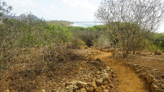 Kalaheo, هاواي: Trail