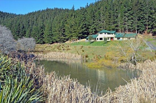 Mosgiel, Nueva Zelanda: The farm and duck pond