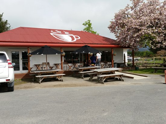 Ashburton, Neuseeland: This used to be the Old Store now a lovely little country Cafe