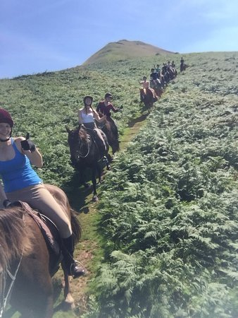 Brecon, UK: Our big trail coming down the common!