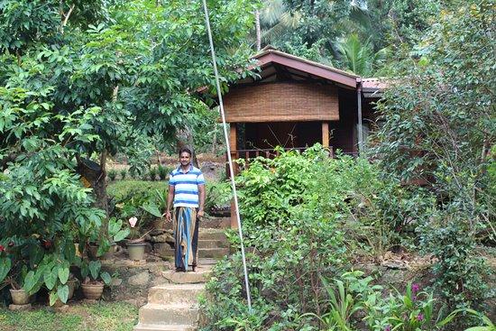 Mawanella, Sri Lanka: Garten des Hotels