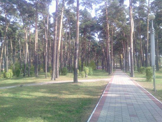 Belogorsk, Russia: Белогорский горпарк
