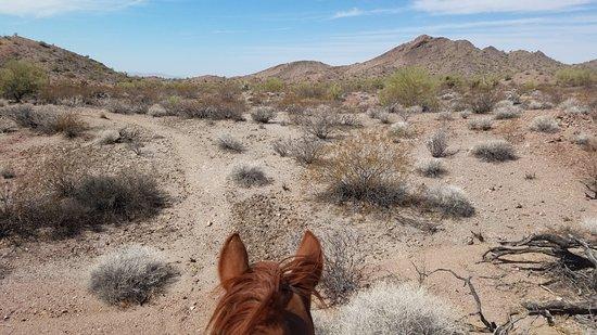 Yucca, AZ: Mountain Rides