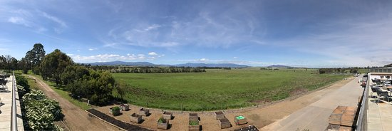 Yarra Glen, Australia: photo4.jpg