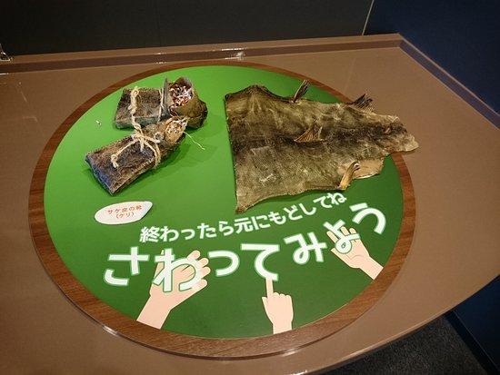 Chitose, Japan: サケの皮で作ったアイヌの履物など