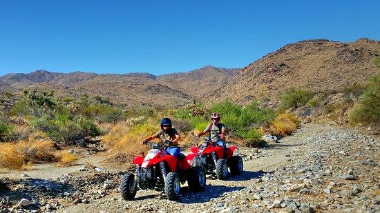 Yucca, Αριζόνα: ATV Rentals