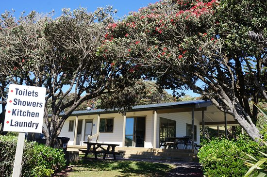 New Plymouth, Yeni Zelanda: Front view of the amenities with the Pohutakawa in bloom.