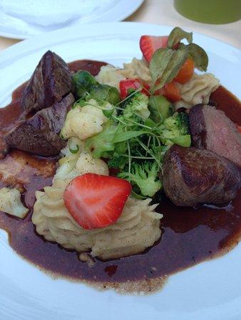 Hotel Bibermühle: 夕食の鹿肉料理。絶品でした。