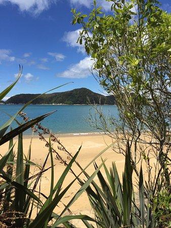 Marahau, Nieuw-Zeeland: Water cove beach where we enjoyed a picnic
