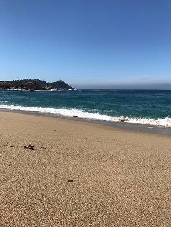 Del Monte Beach Photo2 Jpg