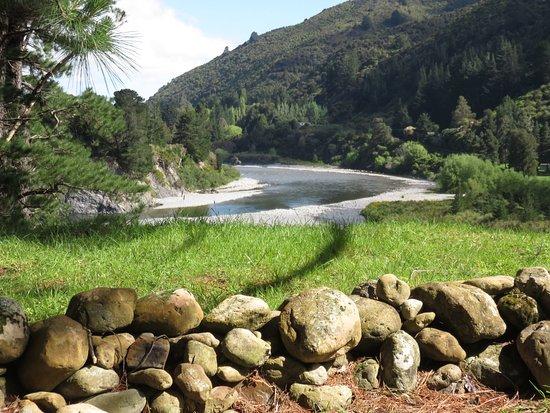 Carterton, نيوزيلندا: View