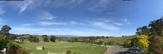 Yarra Glen, ออสเตรเลีย: photo1.jpg