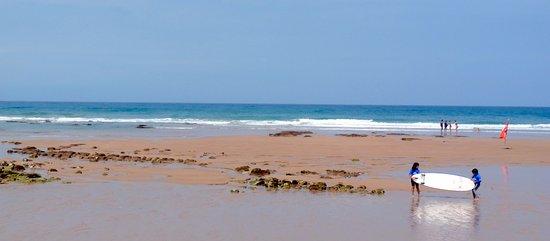 Petits surfeurs photo de office de tourisme de bidart bidart tripadvisor - Bidart office de tourisme ...