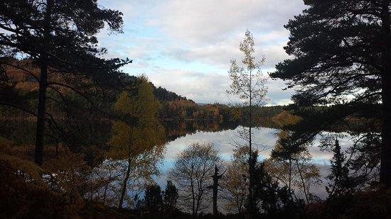Aviemore, UK: Around Loch an Eilean in autumn