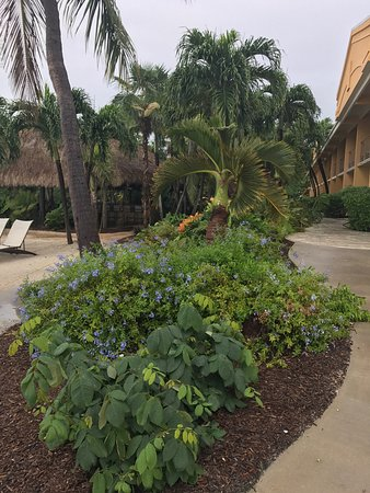 Hampton Inn Key Largo: photo6.jpg