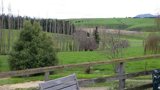 Fairlie, นิวซีแลนด์: view from the terrace