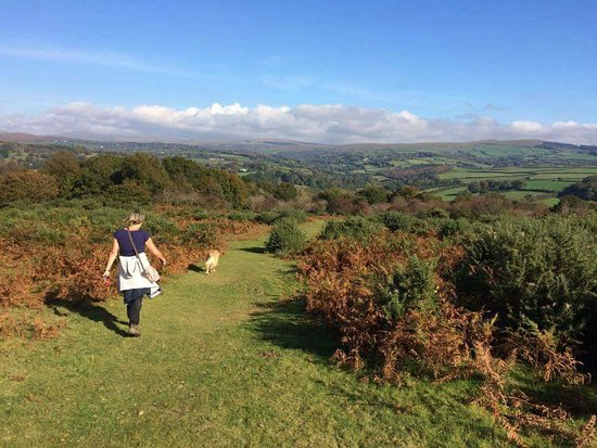 Walk from hotel to Milton Combe, Buckland Abbey, Buckland Monachorum and back via Yelverton