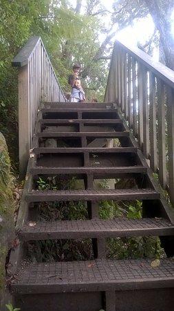 Mount Maunganui, Nya Zeeland: bridge