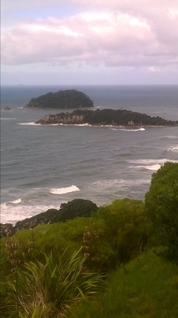 Mount Maunganui, New Zealand: View from half way
