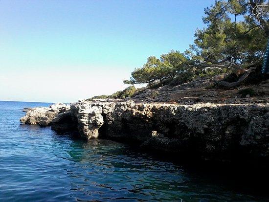 Turkish Mediterranean Coast, Turkey: Море и сосны. Изумительный воздух