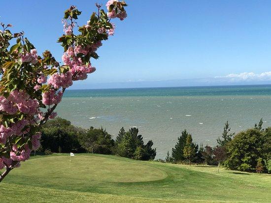 Tasman, Nowa Zelandia: photo0.jpg