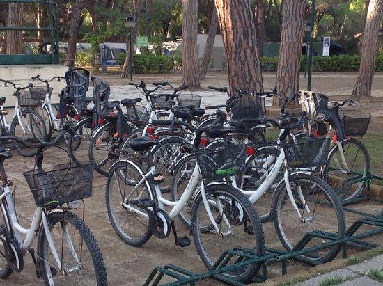 Principina a Mare, İtalya: Bike rental