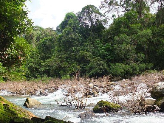 写真Khao Sok National Park枚