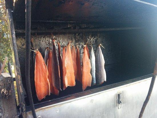Bar Bosmanski: Tuczone łososie