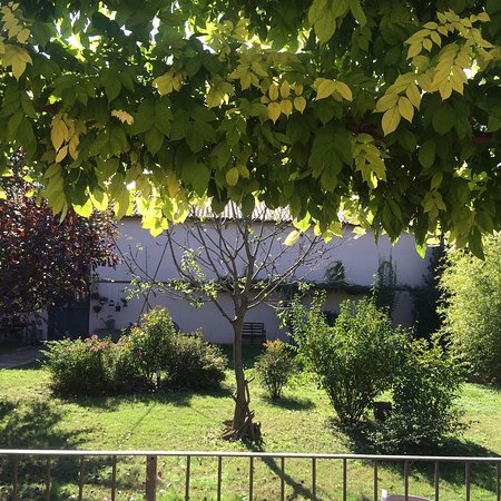 Province of Ravenna, Włochy: photo0.jpg