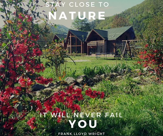The hotel surrounded by nature with a warn quote expressing