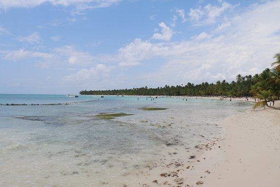 Saona Island: Isla Saona