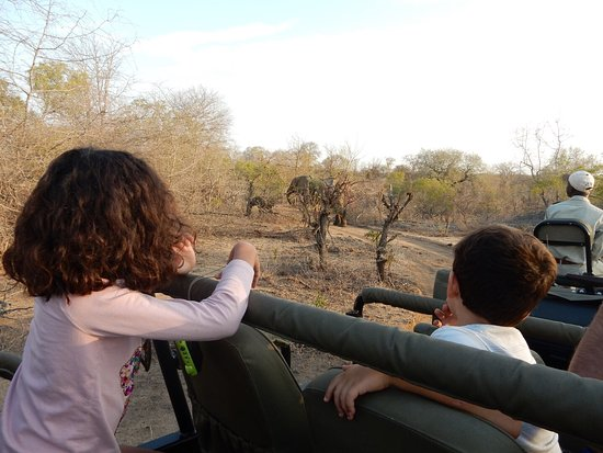 Sabi Sabi Bush Lodge: photo6.jpg