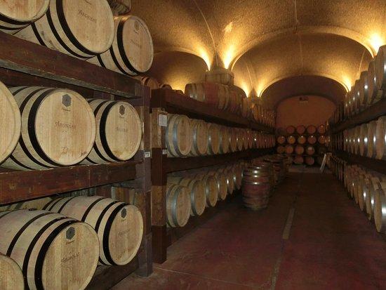 Serdiana, Italia: caves