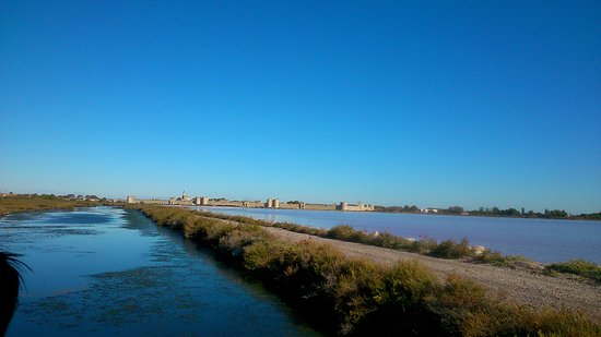 Aigues-Mortes, Francia: Aigues Mortes vue des Salins