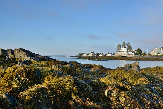 Kennebunk, ME: View along the beach in the Morning