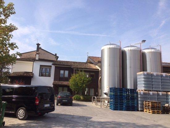 Pieve di Soligo, İtalya: Bisol - wine tasting