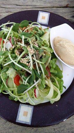 Juodkrante, Lithuania: salad with hummus