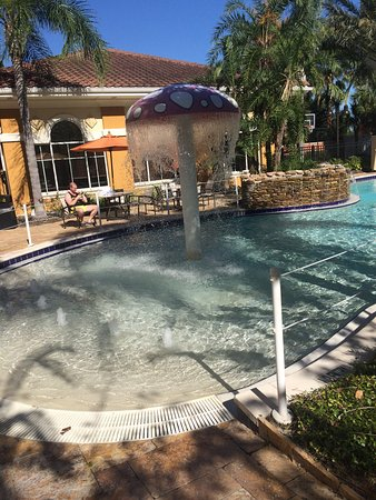 Hilton Garden Inn Lake Buena Vista/Orlando: photo0.jpg