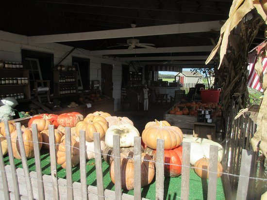 Dawn's Country Market: Up close to the store