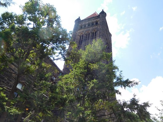 Foto de Altgeld Hall Tower