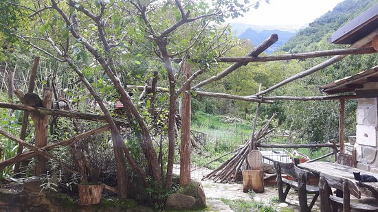 Acquasanta Terme, อิตาลี: cortile