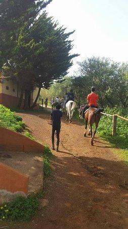 Vega de San Mateo, Spanien: Saliendo de ruta a la montaña