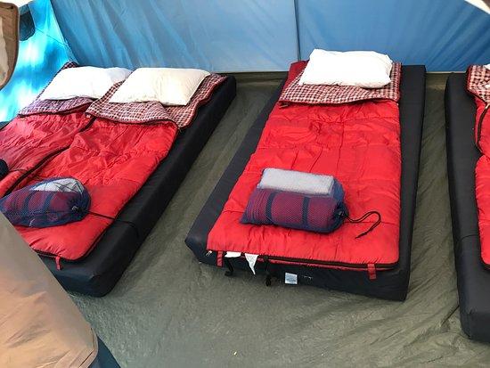 Groveland, Californie : Tent for four